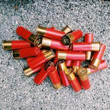 Pallet of shotgun shells